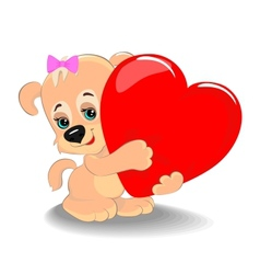 Puppy with heart vector image