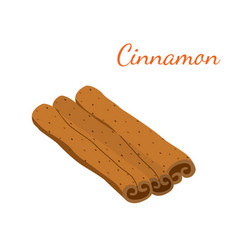 cinnamon cartoon flat style vector image