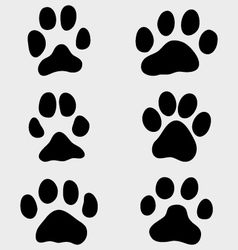 paw dogs vector image