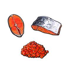 Sea red salmon fish meat fillet caviar set vector