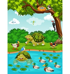 Turtles and ducks at the river vector