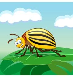Cartoon colorado potato beetle vector image vector image