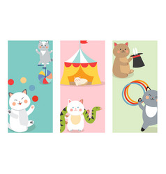 Circus cats cards cheerful for vector