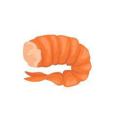 Boiled shrimp without head in bright red shell vector