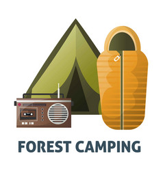camping camp tent and sleeping bag vector image