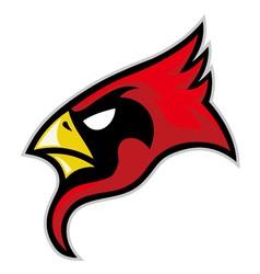 cardinal head vector image