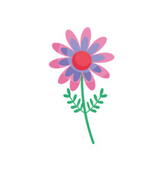 colored flower stem leaves floral icon vector image