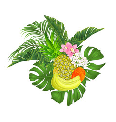 pineapple and banana tropical fruit and orchids vector image