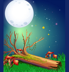 scene with fullmoon over the garden vector image