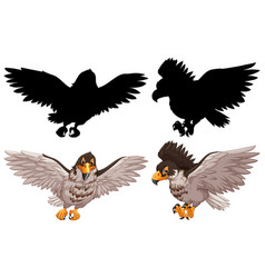 set hawk and its silhouette vector image