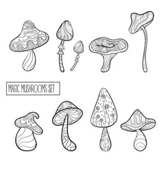 Set of stylized magic mushrooms vector
