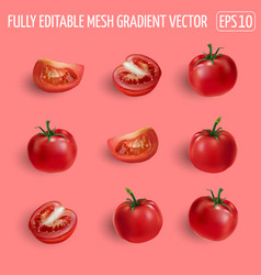 Set ripe tomatoes on a pink background vector