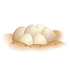 turtle eggs in the sand vector image