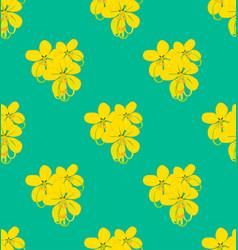 Yellow cassia fistula - gloden shower flower on vector