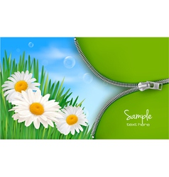 nature background with spring flowers vector image