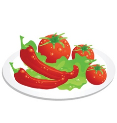 vegetable plate vector image vector image