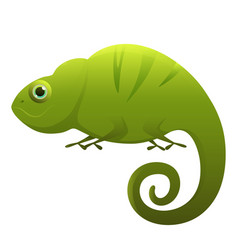 chameleon cute cartoon character vector image