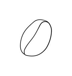 coffee bean hand drawn sketch icon vector image