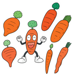 Set of carrot vector