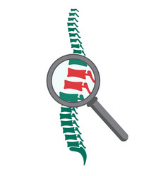 spine with magnifying glass vector image vector image