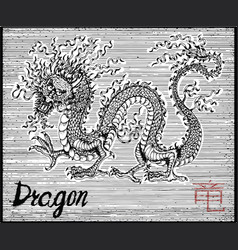 engraved of zodiac symbol with dragon vector image