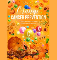Color diet food orange fruits and vegetables vector