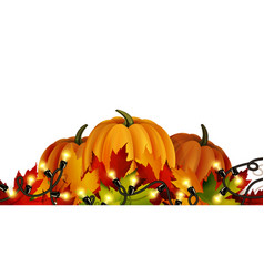 the of pumpkins isolated vector image