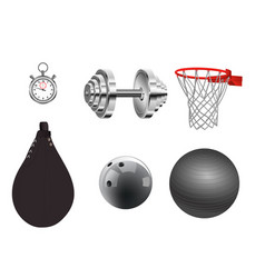 sports equipment on white background vector image