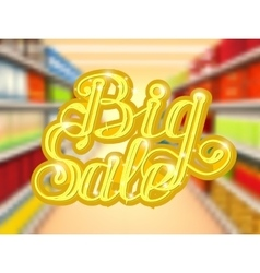 Big sale in supermarket concept of e-shopping vector image
