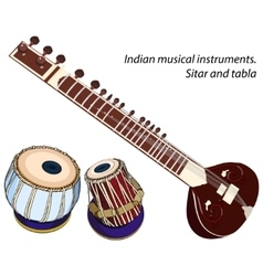 Indian musical instruments - sitar and tabla vector image