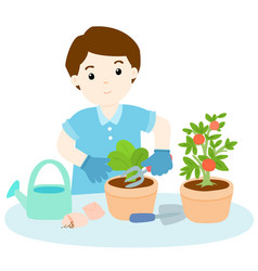 Man planting tree cartoon vector