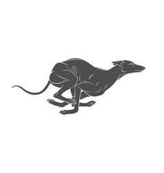 dog running hound vector image