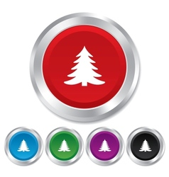 Christmas tree sign icon Holidays button vector image vector image