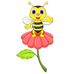 Cute little bee cartoon on red flower vector image vector image