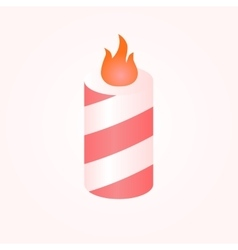 Colorful birthday candles whit flame vector image