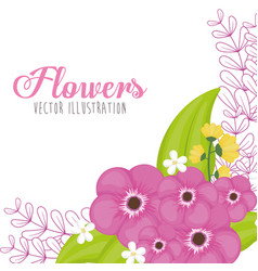 pink flowers spring card vector image