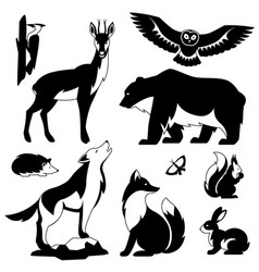 set woodland forest animals and birds stylized vector image