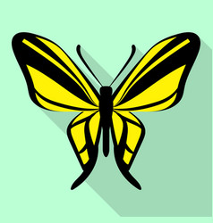 black yellow butterfly icon flat style vector image