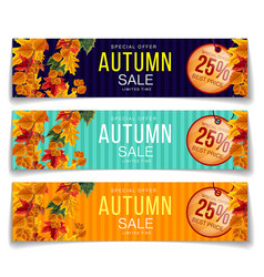 bright coupons for autumnal sale promotion vector image