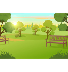 city park or square with trees on meadow vector image