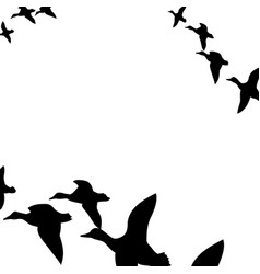 Ducks flying south vector