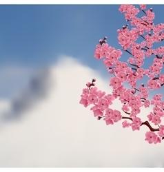 Flowering japanese cherry bush sakura on a vector