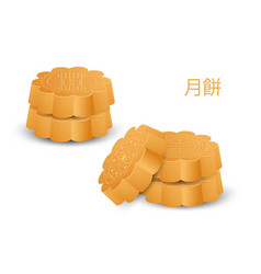 Moon cake elements chinese full day vector