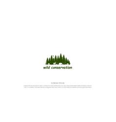 pine cedar conifer larch hemlock cypress fir vector image