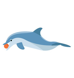 Playing dolphin vector