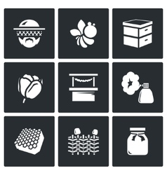 Set of Apiary Icons Beekeeper Bee Hive vector image