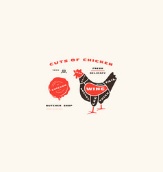 stock chicken cuts diagram in flat style vector image