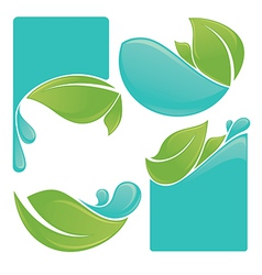 Water and leaves vector