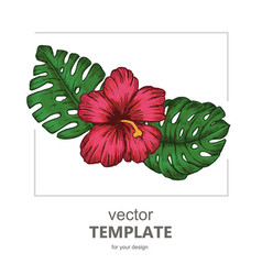 tropical background with tropical leaves and vector image vector image