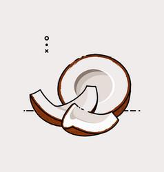 coconut open by half vector image